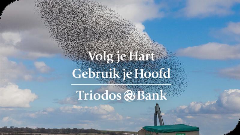 Triodos Bank portfolio